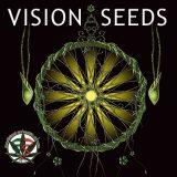 Vision Seeds Autofiorenti Femminizzati 10 semi