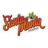 Santa Planta