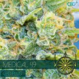 MEDICAL49 CBD 3 semi femm Vision Seeds