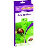 nematoide-dorifera