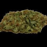 SUPER TUSCAN - 1 gr Erba del Chianti