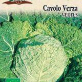 CAVOLO VERZA VERTUS 5 gr SEMI - Arcoiris