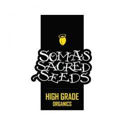 Soma's sacred seeds