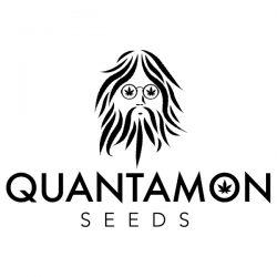 Quantamon Seeds